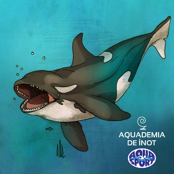 balena_orca_ilustratie_340x340