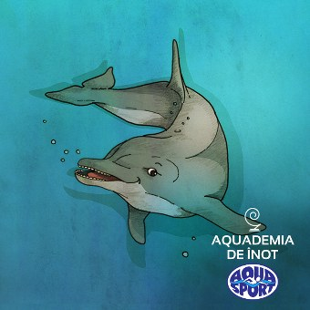 delfin_ilustratie_340x340